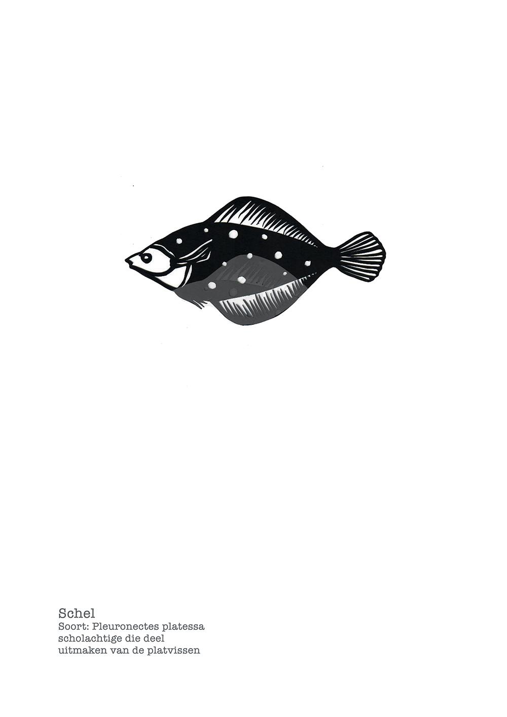 Studiocooliejoelie-karinmol-papiersnijkunst-schel-vis